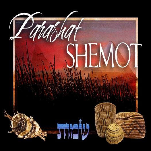 Download [PDF] Studies In Shemot Exodus Free Online | New ...